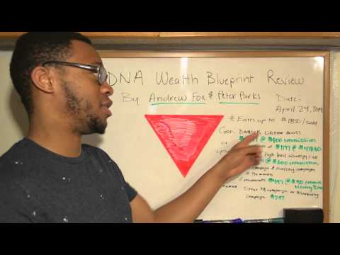 DNA Wealth Blueprint Review Scam Proof + $8725 in ONE MONTH!