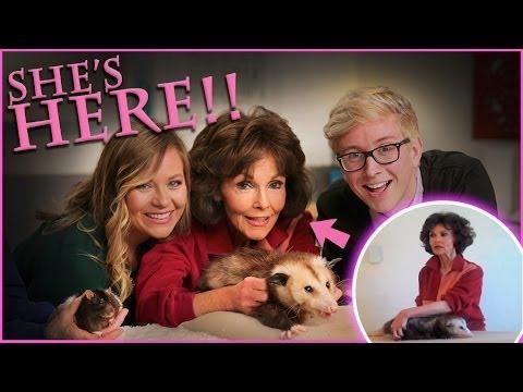 Top That!   How to Massage an Opossum   Viral All Stars