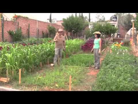 Preparación de  la cama para el cultivo de hortalizas