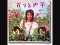 Ethiopian Classic Music - Metche New