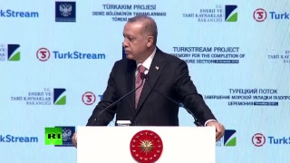 Putin & Erdogan to open Turkish Stream gas pipeline's offshore section - RUSSIATODAY