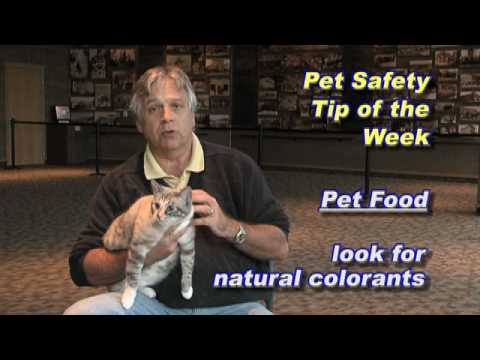 Kootenai Humane Society Pet Safety Tip of Week 10-01-09-food safety