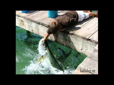 рыбалка на халяву
