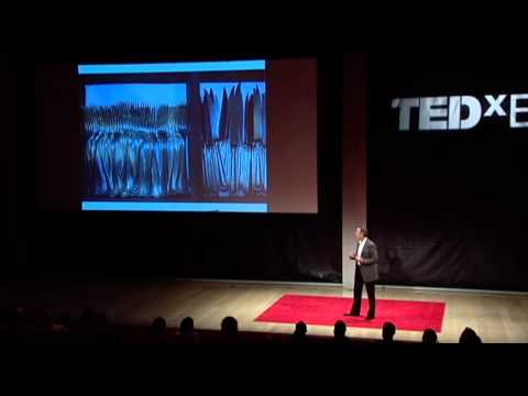 TEDxEast - Thomas Keller - The reach of a restaurant