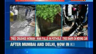 After Mumbai and Delhi, now a tree fell on a moving car on Kolkata's Alipore Road - NEWSXLIVE
