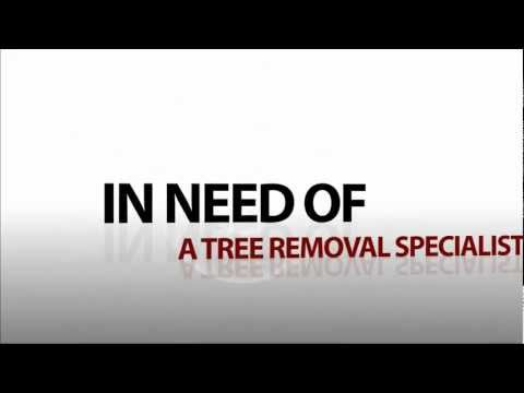 24 Hour Emergency Tree Removal Atlanta | CALL:(404) 937-7555 | Tree Removal Atlanta