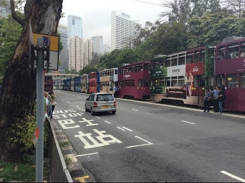 Hong Kong Double Decker Tram Line Up