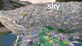 Plastic whale goes on a journey for #OceanRescue - SKYNEWS