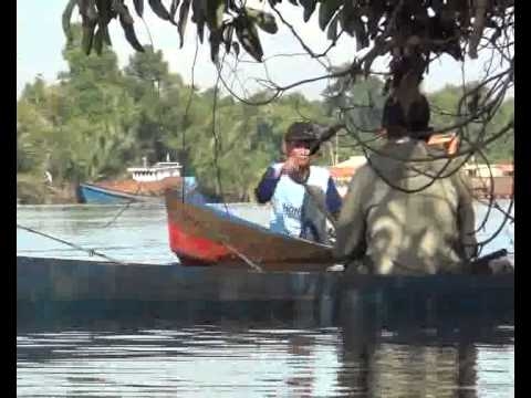 MANCING UDANG SUNGAI BEMBAN