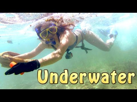 Catching Fish Underwater - Tropical Island Part 2 of 14