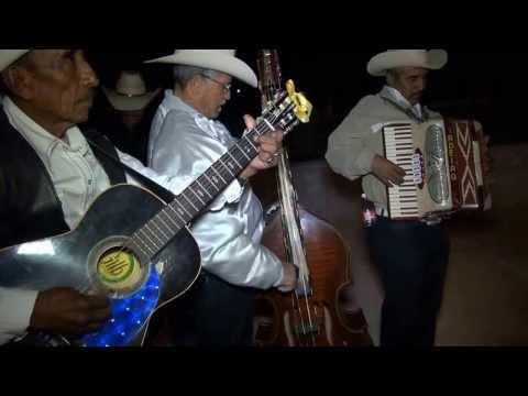 Taquiza - VIBORAS TEPETONGO JEREZ ZACATECAS