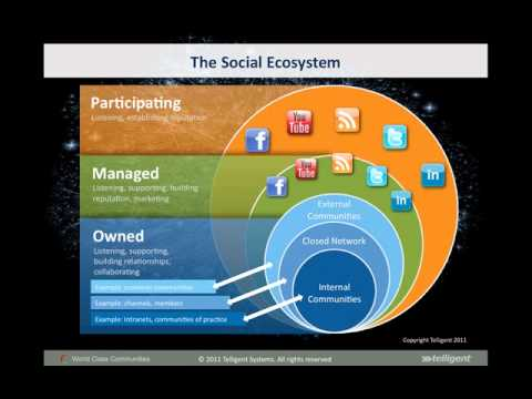 Telligent - The Social Ecosystem
