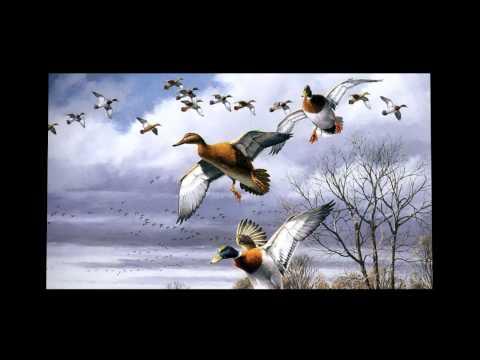 Gülay - Gurbet Kuşları   - Sunum: Ramazan Ç
