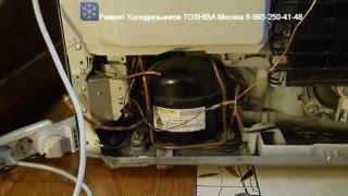 Ремонт Холодильников ТОШИБА TOSHIBA Москва
