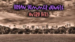 Royalty Free Intro Downtempo Techno: Urban Summer Jungle Intro Bits
