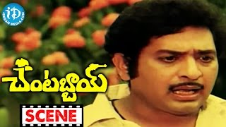 Chantabbai Movie Scenes - Sri Lakshmi Comedy || Chiranjeevi || Suhasini || Jandhyala - IDREAMMOVIES