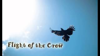 Royalty Free :Flight of the Crow