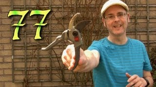 Learning English Lesson 77, Pruning, Mr Duncan Lesson seventy seven