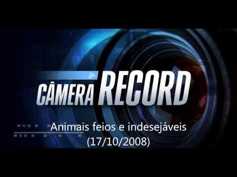 Câmera Record: os animais feios e indesejáveis
