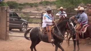 Nueva Alianza (Ñates) (Calera, Zacatecas)