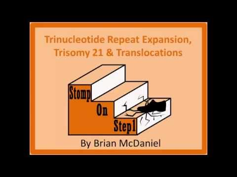 Trinucleotide Repeat Expansion, Trisomy 21, Nuchal Translucency Alphafetoprotein t(1418) t(1517)