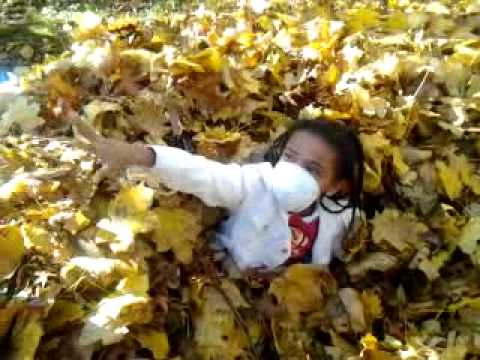 chillin in some leaves
