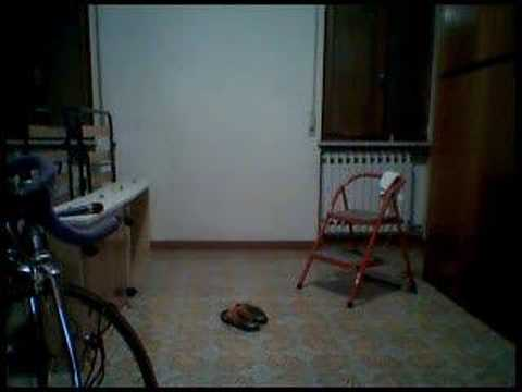 a video test into my home..when i come back...and i saw the results...in the floor something has bee