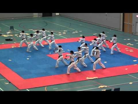 Kukkiwon Korean Worldfamous Taekwondo Demoteam in Netherlands 2011-4-6 (3/5)