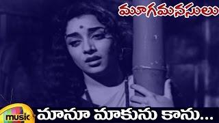 ANR Hits   Mooga Manasulu Telugu Movie Video Songs   Maanu Maakunu Gaanu Full Video Song   Savitri - MANGOMUSIC