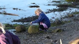 Skt. Hans ved Strandparken 2012
