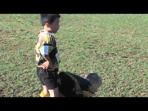 2012 Under 6 Blues Highlights