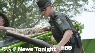 This Is What An Ivory Bust In New York City Looks Like (HBO) - VICENEWS