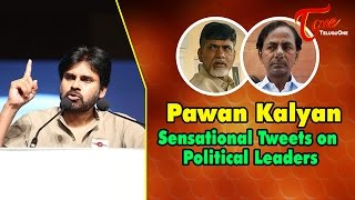 Pawan Kalyan Sensational Comments on Politcial Leaders - TELUGUONE