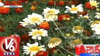 Horticulture department plans for flower nurseries in Hyderabad - Teenmaar News - V6NEWSTELUGU