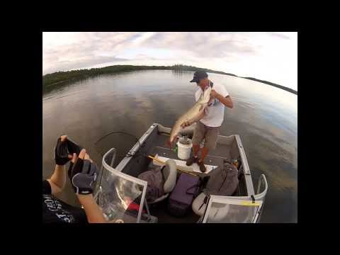 Reel Encounters 2013 LOTW Top Water Strike 44