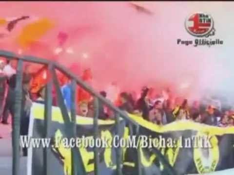 Crackage ♥  Ultras Yellow Tigers ♥ Contre  AzzeFoun