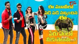 Sankranti Special F2 – Fun and Frustration Team Funny Interview | Venkatesh | Varun Tej | TeluguOne - TELUGUONE