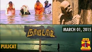 Nadodi 01-03-2015 A Visit to 500 Year old Dutch Mausoleum in Pazhaverkaadu (Pulicat) and Shrimp Fishing with Irula Women in Traditional Manner – Thanthi TV Show 01-03-15 Naadodi Adventurous & Thrilling program