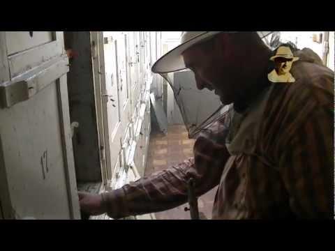 Lucrări de toamnă la stupi 1/5 2012