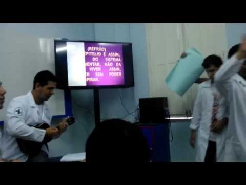 Sistema Tegumentar - Parodia - Biomedicina o/