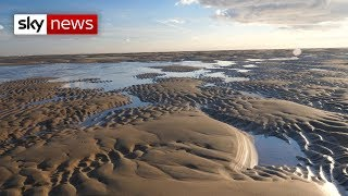 Michael Gove calls for a third of the world's oceans to be protected - SKYNEWS