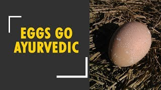 Watch how eggs turn Ayurvedic in Meerut - ZEENEWS