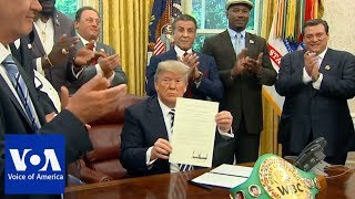 Trump pardons late boxer Jack Johnson - VOAVIDEO