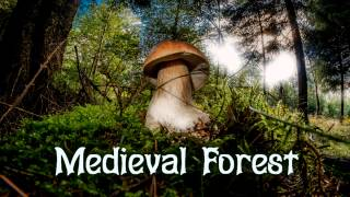 Royalty Free :Medieval Forest