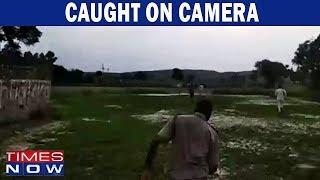 Caught On Camera: Cop Chase Cow Smugglers - TIMESNOWONLINE