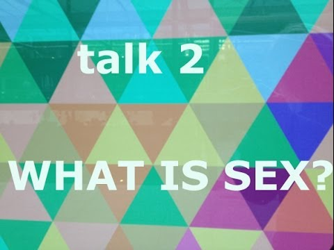 What is Sex. A Woman and A Thai Men. Part 2.