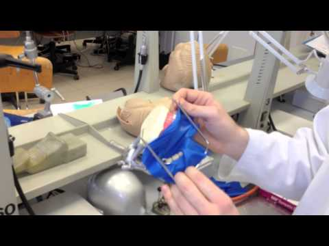 Rubber Dam - Isolation In Conservative and Endodontics Dentistry
