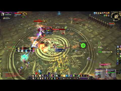 CHRIS - 10 Man Heroic Twin Consorts - Discipline Priest POV