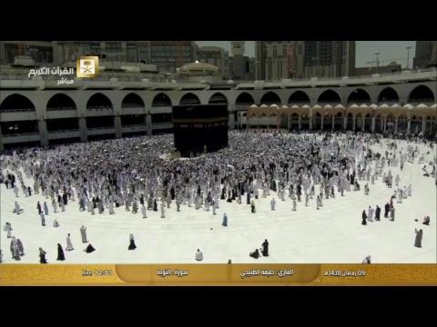 قناة القران الكريم Live Stream - عربي تيوب