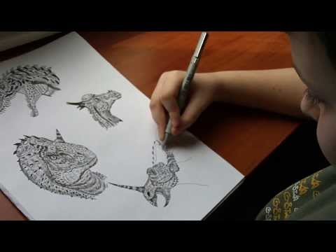 Dusan Krtolica 11 years, Crtanje Zivotinja, Drawing Animals